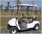 Electric Golf Car with 2 Seats