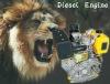 Strong Power Diesel engine