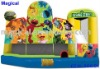 Colour decoration inflatable combo