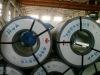 Primer galvanized steel coils-AnSteel