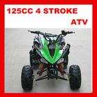110cc Quad bike (HL-ATV-8016)