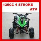 110cc Quad bike (HL-ATV-8016)