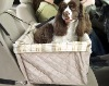 Dog car carrier/dog booster seat