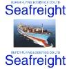 Shipping agent to Australia from Guangzhou/Shenzhen/Shanghai by YML.WHL, HANJIN.MSK,OOCL