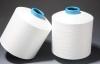 Core-Shealth Specialized Nylon yarn