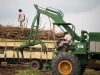sugar cane grab loader