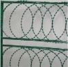 PVC Coated Razor Barbed Wire for fence ( Manufacturer)