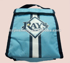 economy ice cooler tote bag