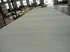 Big size birch plywood