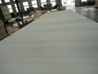 Big size birch plywood