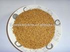 Hot!!!Warm season High yield Hybrid Pennisetum seed