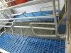 sow stalls