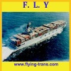 Professional shipping agent in Shenzhen/HK/Ningbo/Shanghai/China to Singapore