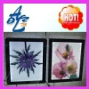 2012 OEM newest led Advertising light box, led box display , LED cabient,led light box frame