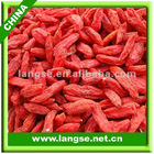Ningxia dried Goji Berry wolfberry