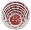 5 PC melamine bowl set