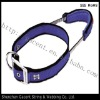 dog fashion collars and leashes