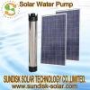 DC solar deep well water pump