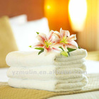 2012 Hot Sale !!! Hotel 100% Cotton Bath Towels with your logo