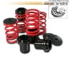 HKR 51-1167 coilover springs for Honda Accord 03-04