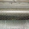 Chain Link Fence(PVC)