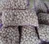 normal white garlic packing in 20kg mesh bag