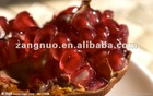 punica granatum extract used as Food and Drink