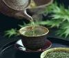 Green Tea/Spring Green Tea