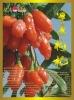 Organic Gojiberry/wolfberry