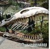 Buy Fiberglass Dinosaur Skull for Sale