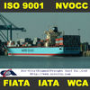 Ocean freight from America/Europe to China
