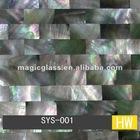 Ceremic Shell Mosaic/Abalone Mosaic Tile
