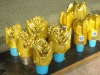 oil drilling tools,drill bits