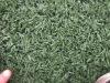 plastic grass for football field