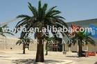 artificial date palm tree, artificial palm tree, phoenix canarensis