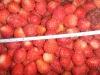 Iqf Strawberry (Grade A 15-25mm)
