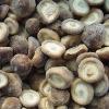 Sell IQF Shiitake Mushrooms