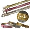 pet products Dog Collars ZQQS004