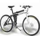 250w Electric bike BT-M13