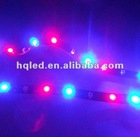 Top sell ,SMD3528 60pcs/m non waterproof 12v RGB led flexible strip from onegreen lighting