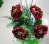 Christmas rose; Christmas flower ;