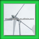 LOW PRICE PERMANENT MAGNET WIND TURBINE GRID