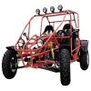 800CC 2-seater popular Go Kart