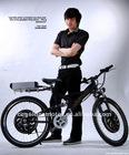 E-bike Piant-Dual Drive