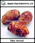 Taro Fresh, China Eddo Roots fresh taro on hot sale