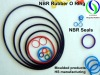 Colored NBR for Sealing Rubber O Ring