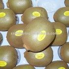 fresh golden kiwi fruit