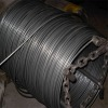 sae 1008B sae 1006 wire rod 5.5,6.5mm