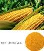 corn gluten meal Protein 60%