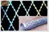 Razor Barbed Wire(hot)